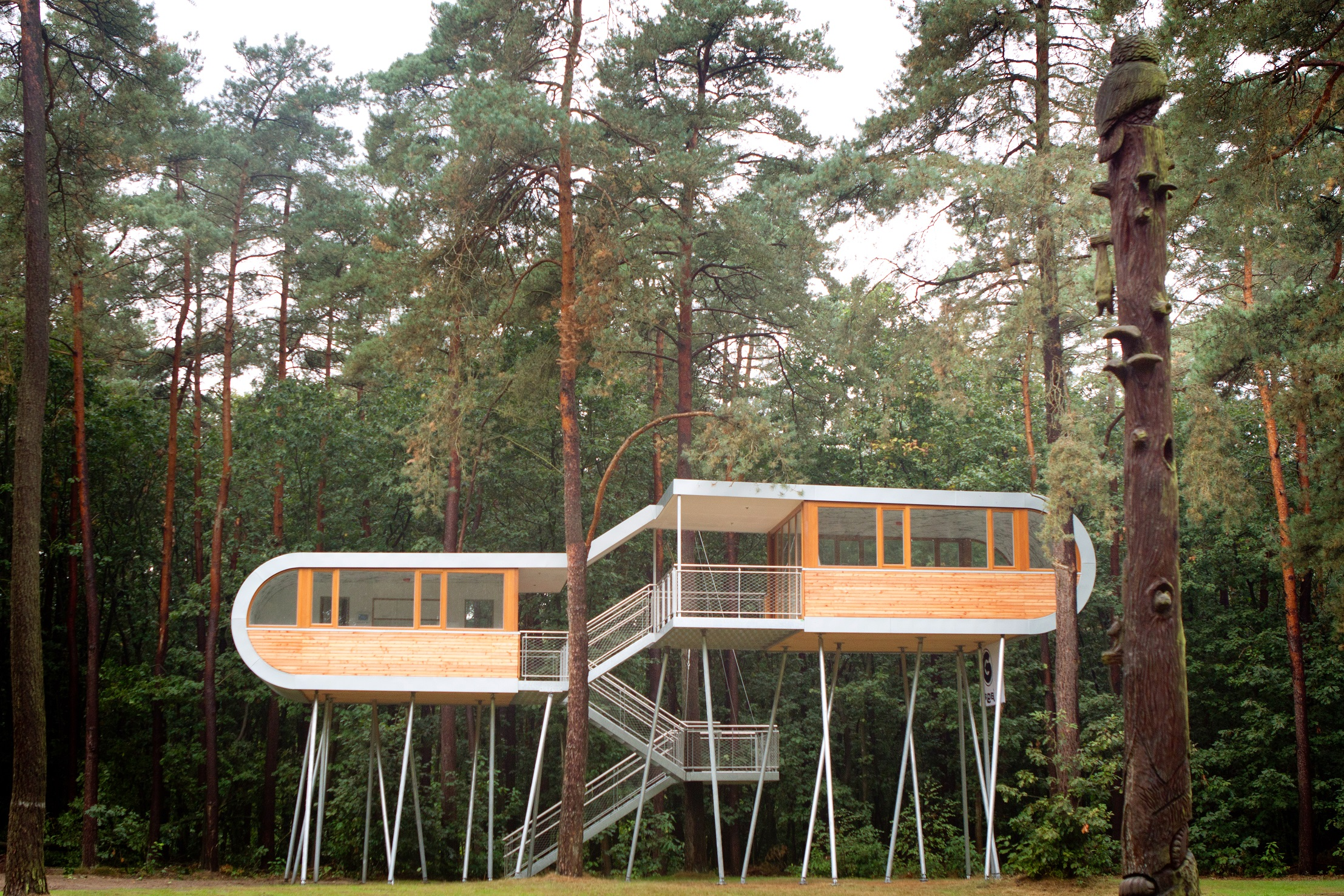 the treehouse room for sustainable thinking
